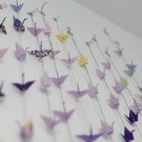 violet5